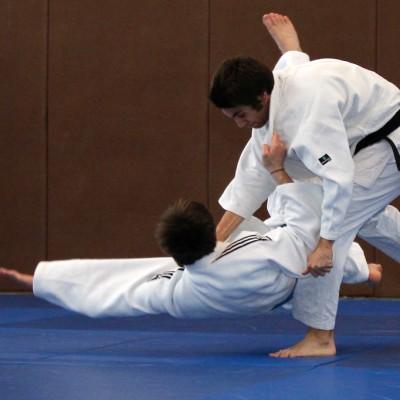 Tournois d'arts martiaux et de boxe