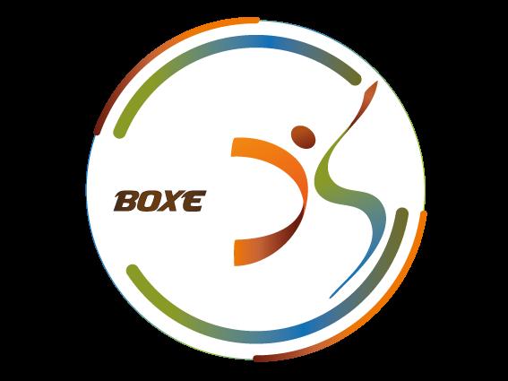 Boxe 1